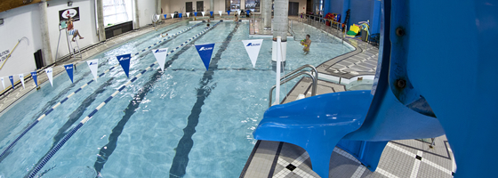 Ottawa Adult Swim Lessons Aquatics Soloway Jcc